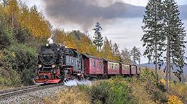 Rosenhof-Reisen